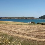 Campo e mare - Paros. Champ et mer - Paros - Field and sea