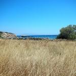 Grano e spiaggia - Paros. Blé et plage - Paros - Beach from Paros
